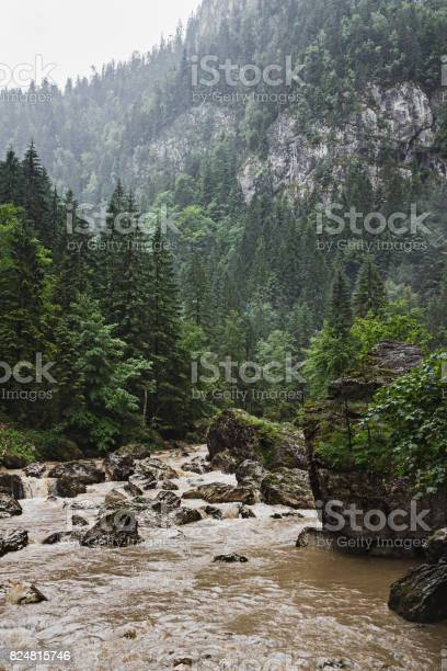 Photo of Wild nature landscape, scenery of Bicaz river flow with big stones in Carpathian mountains, Romania