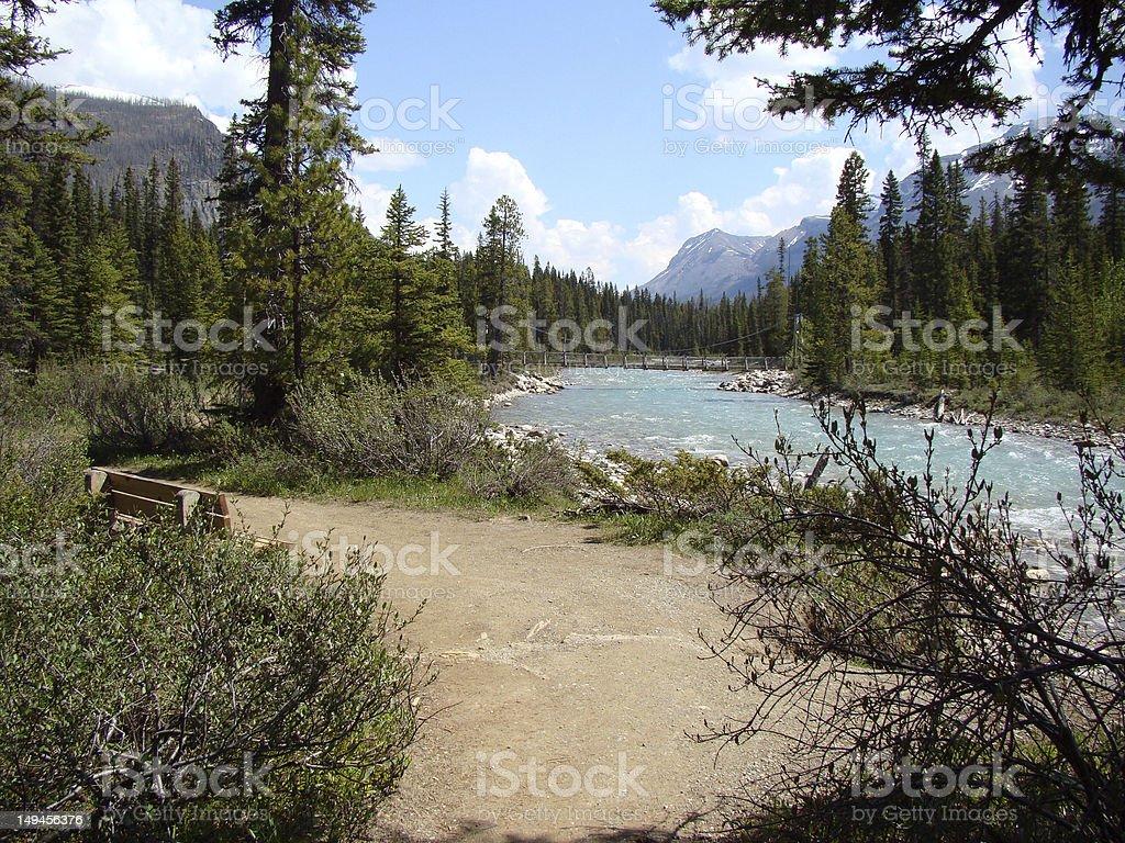 Wild open land stock photo