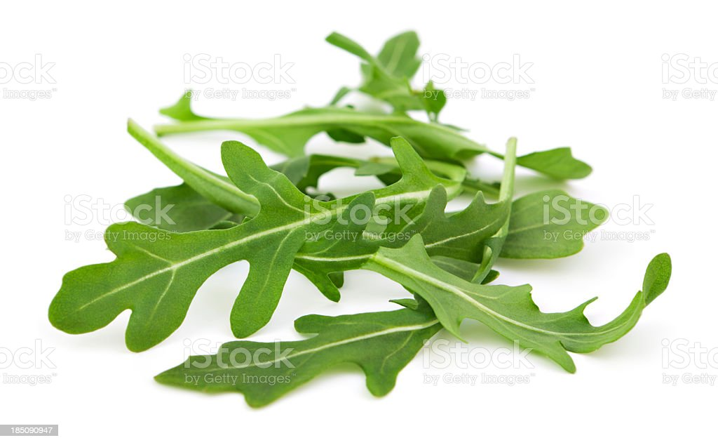 Wild organic arugula stock photo