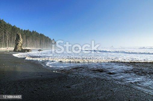 istock Wild Pacific Coast At Ruby Beach Olympic National Park Washington 1216844452