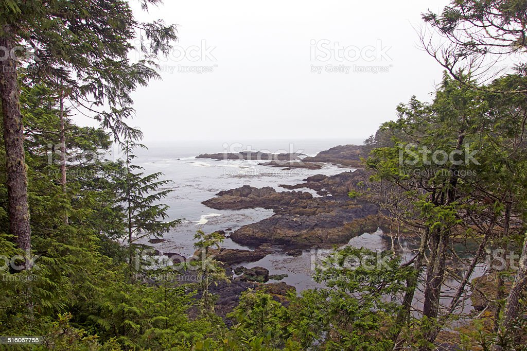 Wild Pacific Trail stock photo