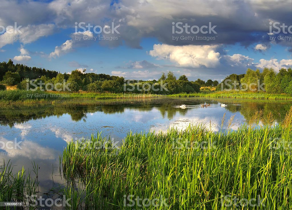 wild place royalty-free stock photo