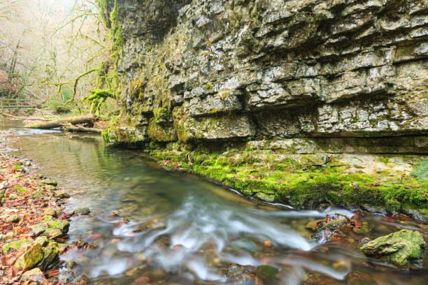 Wildfluss im Herbst – Foto