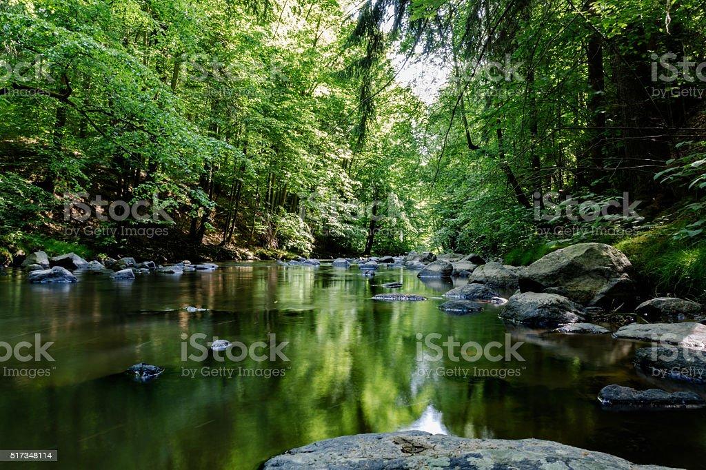 Wild river im Wald – Foto