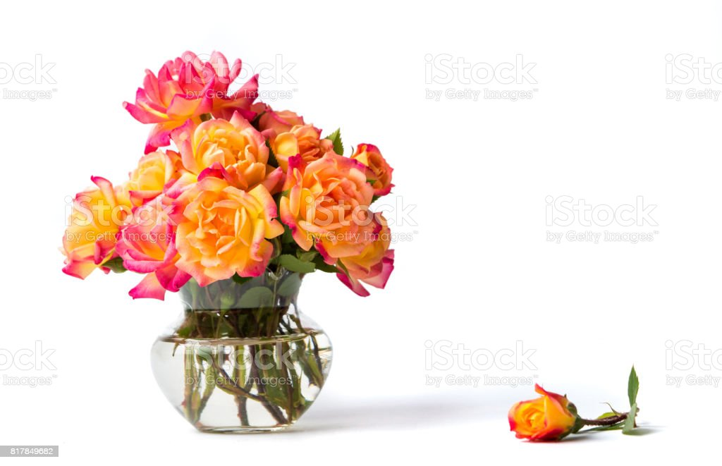 Wild roses bouquet in glass vase stock photo