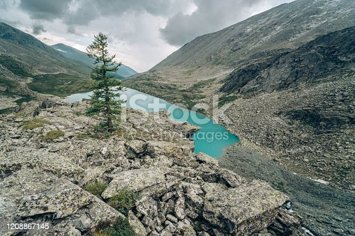 istock Wild russian nature. Beautiful landscape with emerald lake in the mountains. Akchan Lake with clear turquoise water. Traveling in the Altai Republic. Alone tree on the foregroung. Siberian reserve. 1208867145