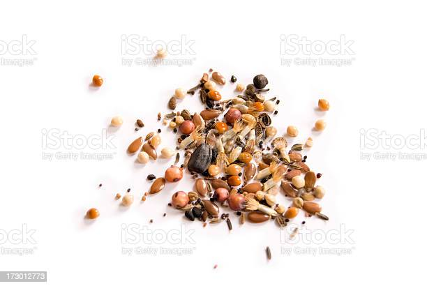 A selection of British wild flower seeds isolated on a white background.