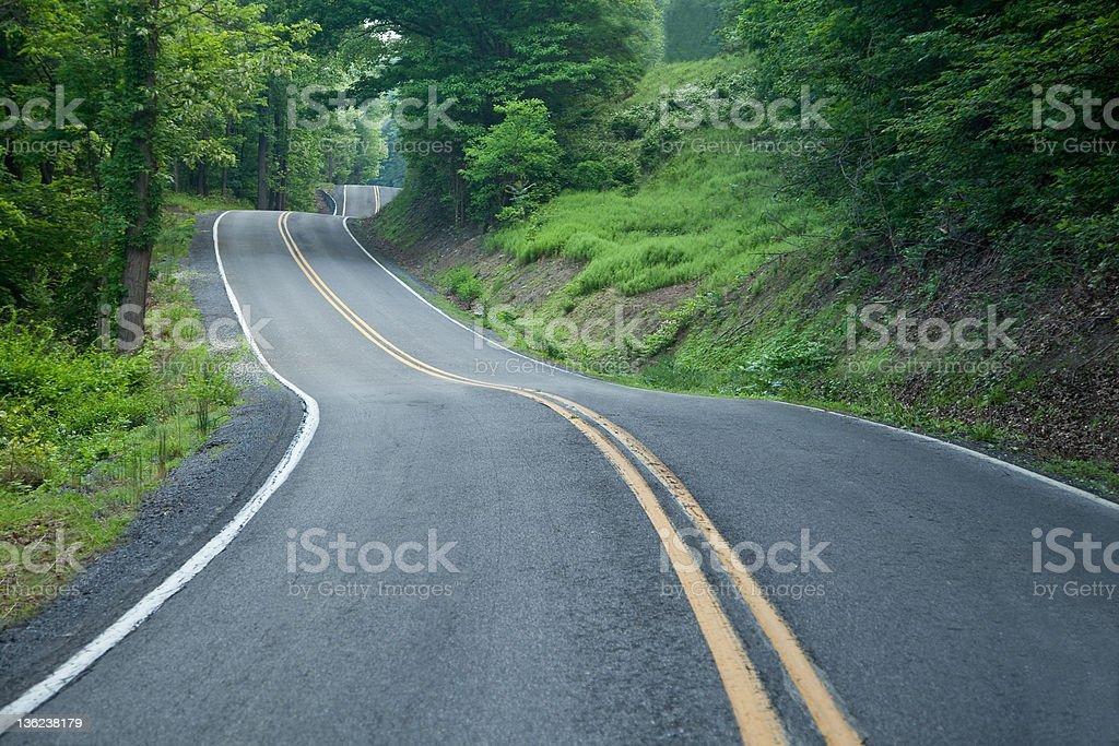 Wild Twisty Road stock photo