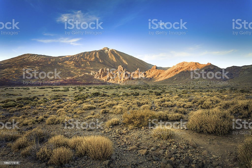 Wild Valley in El Teide National Park, Canary Islands stock photo