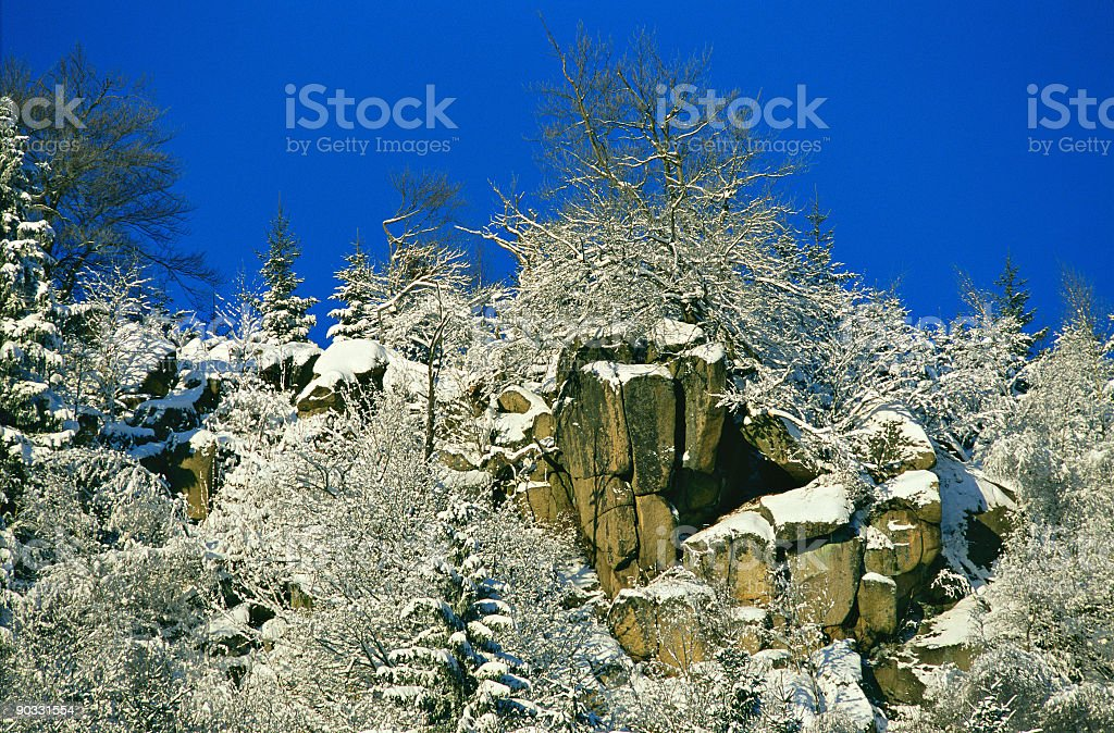 Wild Winter Landscape royalty-free stock photo