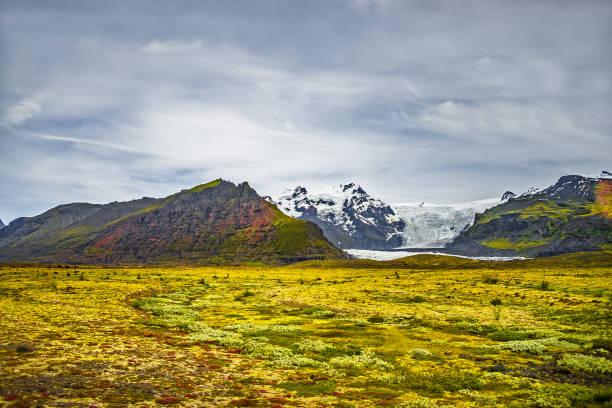 Wildnis im Vatnajökull Nationalpark im Süden Islands, Sommerzeit – Foto