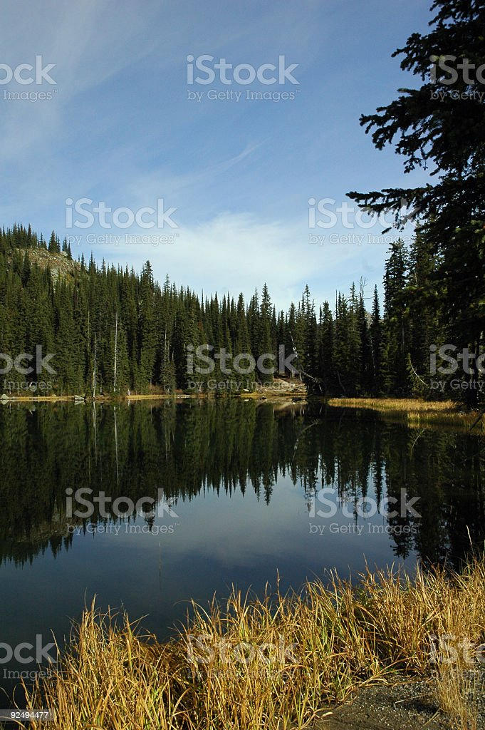 Wilderness Lake 3 royalty-free stock photo