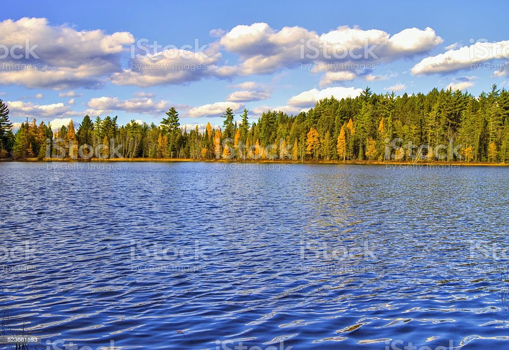 Wilderness Lake At Hartwick Pines State Park In Michigan stock photo