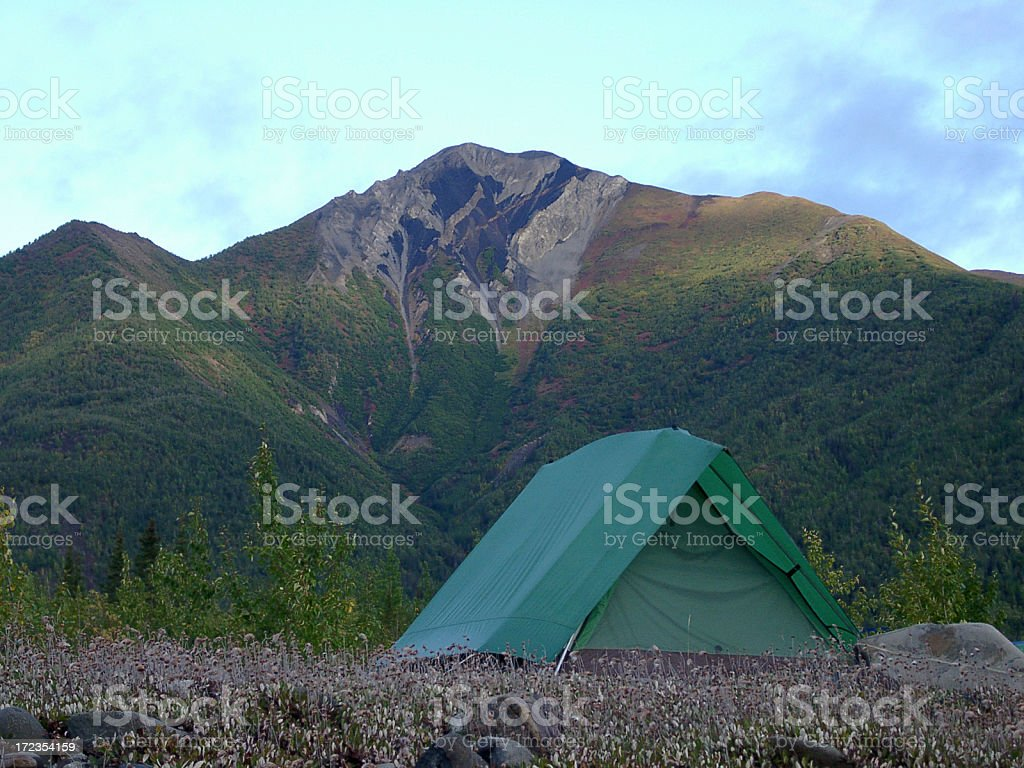 wilderness outback tent camping royalty-free stock photo