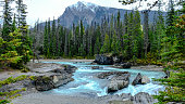 Mountain snow river flows below in between them, with  rocks  and trees the set decor is perfect! Yoho National Park, Canada.