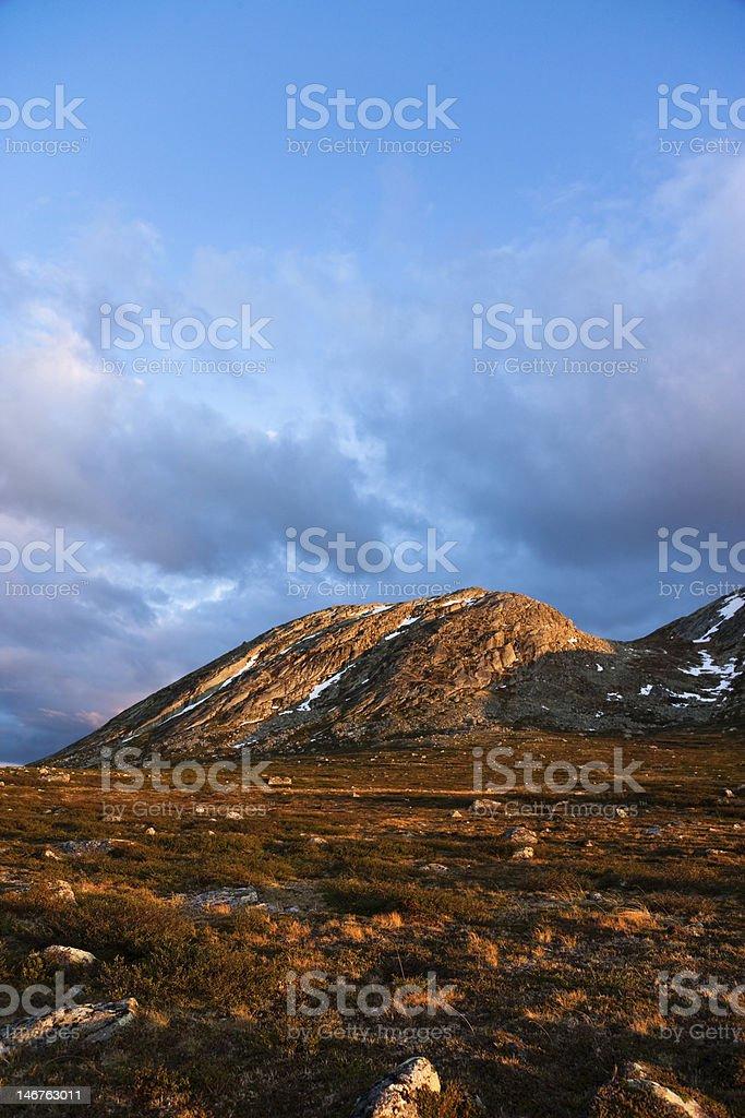 Wilderness stock photo