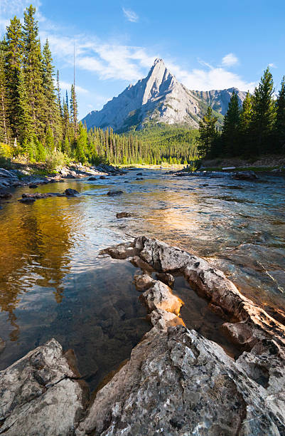Wilderness Wilderness backcountry, river flowing towards mountain, Kananaskis Country close to Spray Lakes, looking north towards cone mountain from coordinates 50.858627,-115.444694 kananaskis country stock pictures, royalty-free photos & images