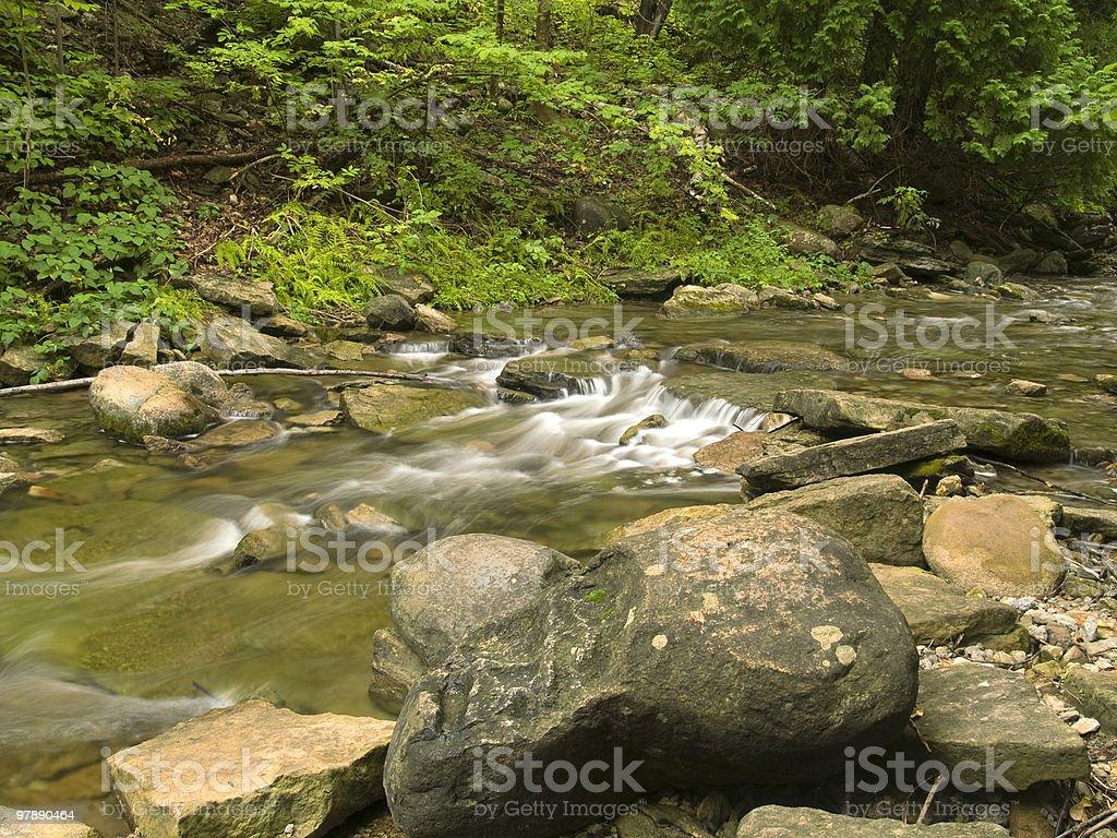 Wilderness Stream royalty-free stock photo