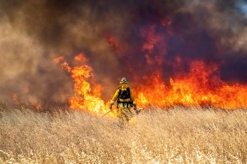 Wildfire raging across grass meadow in California