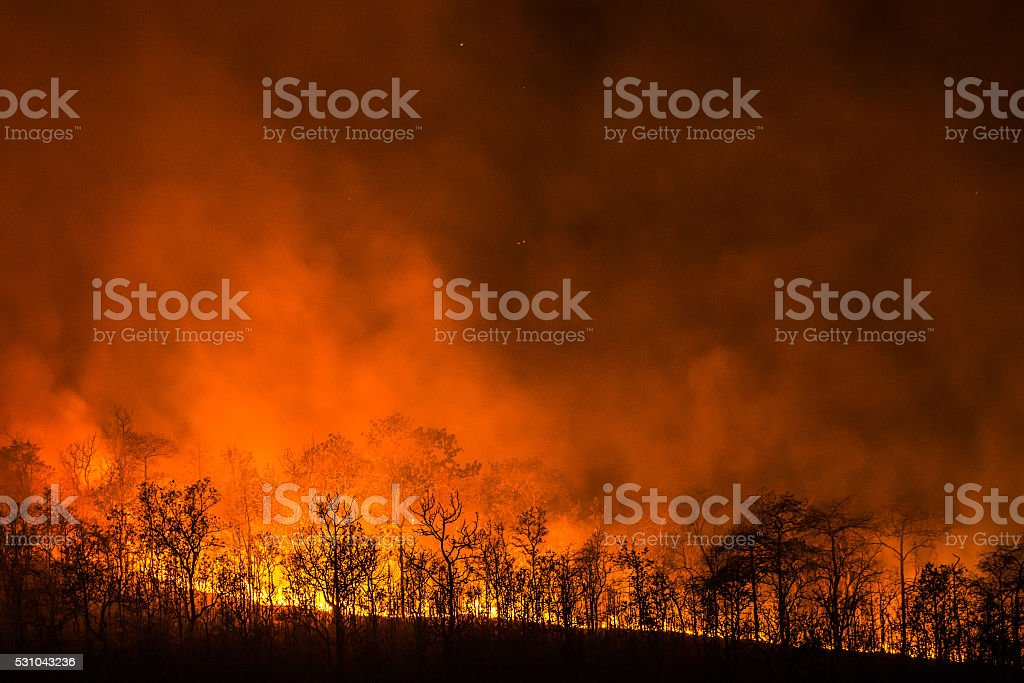 Wildfire line on hill at night stock photo