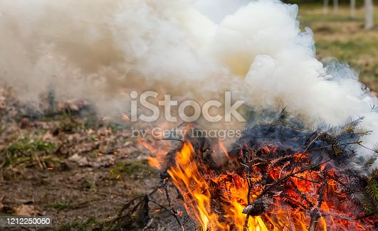 istock Wildfire, lots of smoke, fire in the foreground 1212250050