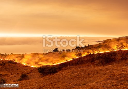 Wildfire on California coast - Sonoma County by ocean with view above marine layer.