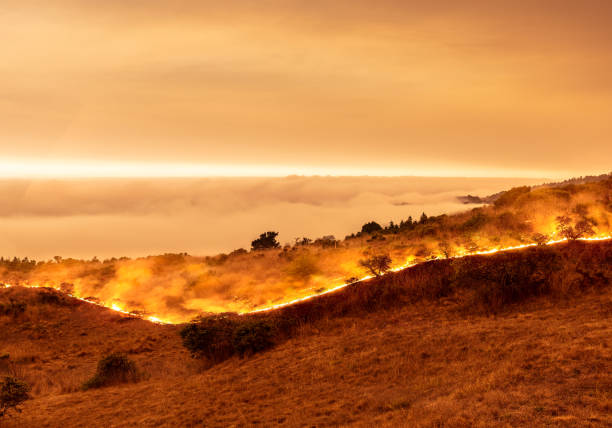 Wildfire on California coast - Sonoma County by ocean with view above marine layer. stock photo