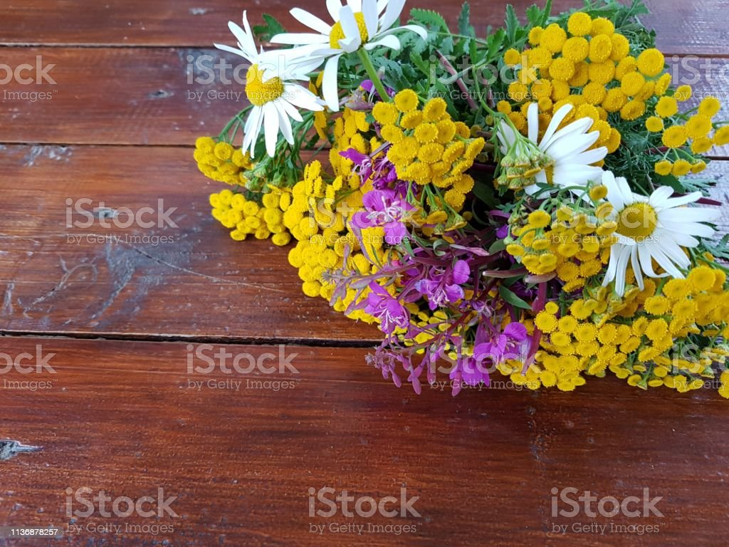 Wildflower Bouquet Stock Photo Download Image Now Istock