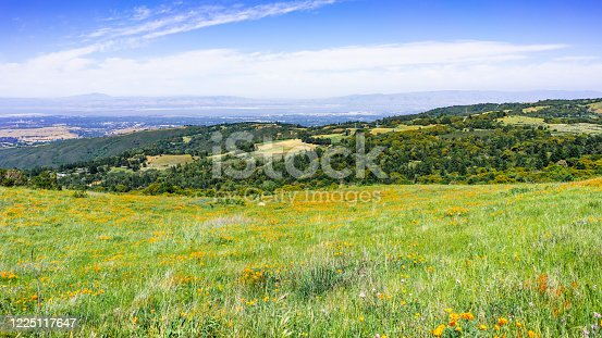 istock Wildflower covered meadows and green hills in Santa Cruz mountains; Silicon Valley and the shoreline of South San Francisco bay, visible in the background; California 1225117647