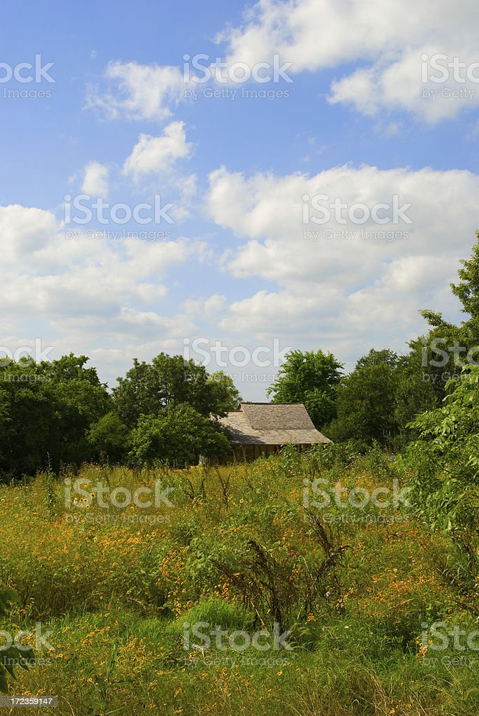 wildflower ranch royalty-free stock photo
