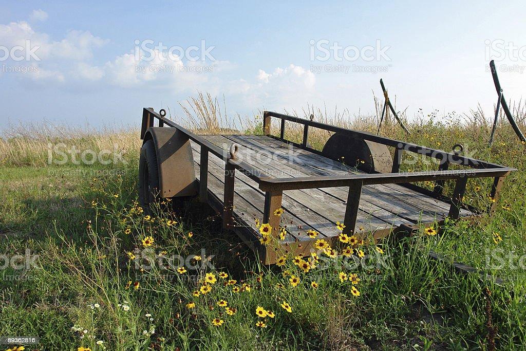 Wildflower Wagon in field royalty free stockfoto
