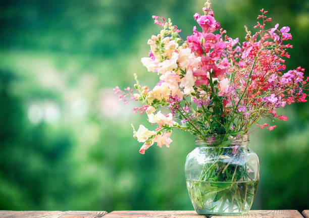 Wildflowers in a Glass Vase over Green Background stock photo