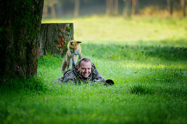 """Wildlife photographer in grass with curious fox on his back Wildlife photographer hidden in grass with big smile in face, having curious fox on his back looking down to the photographer wildlife or """"wild animal"""" stock pictures, royalty-free photos & images"""