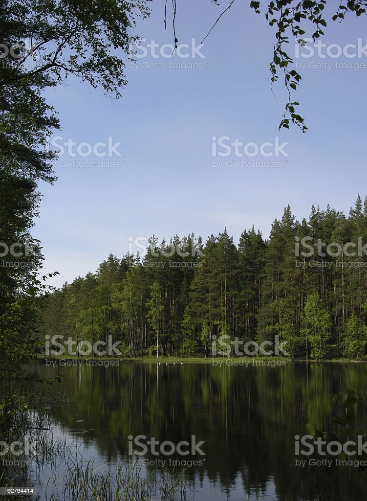 Wildlife royalty-free stock photo