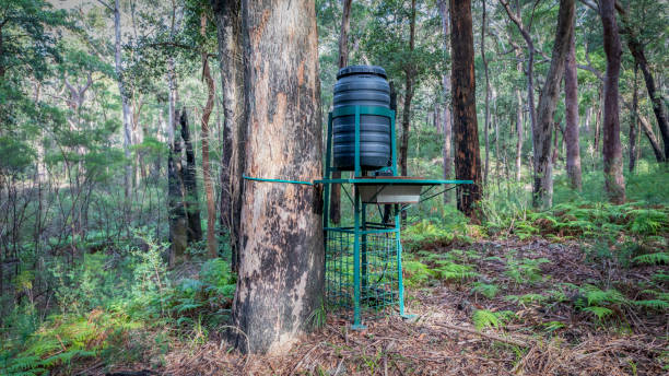 A wildlife watering system in the Australian National Parks program stock photo