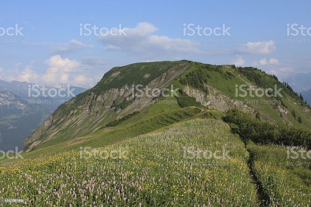 Wilerhorn, mountain royalty-free stock photo