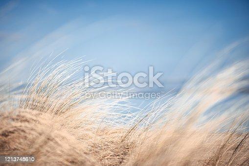 istock Wilhelmshaven beach and sea 1213748610