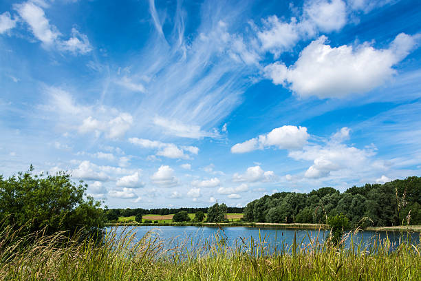 Willen lake under blue cloudy sky in summer Willen lake and grasses on lakeside under blue cloudy sky in summer at Milton Keynes, England buckinghamshire stock pictures, royalty-free photos & images