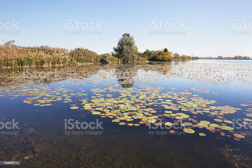 William W Powers State Recreation Area in Hegewisch, Chicago royalty-free stock photo