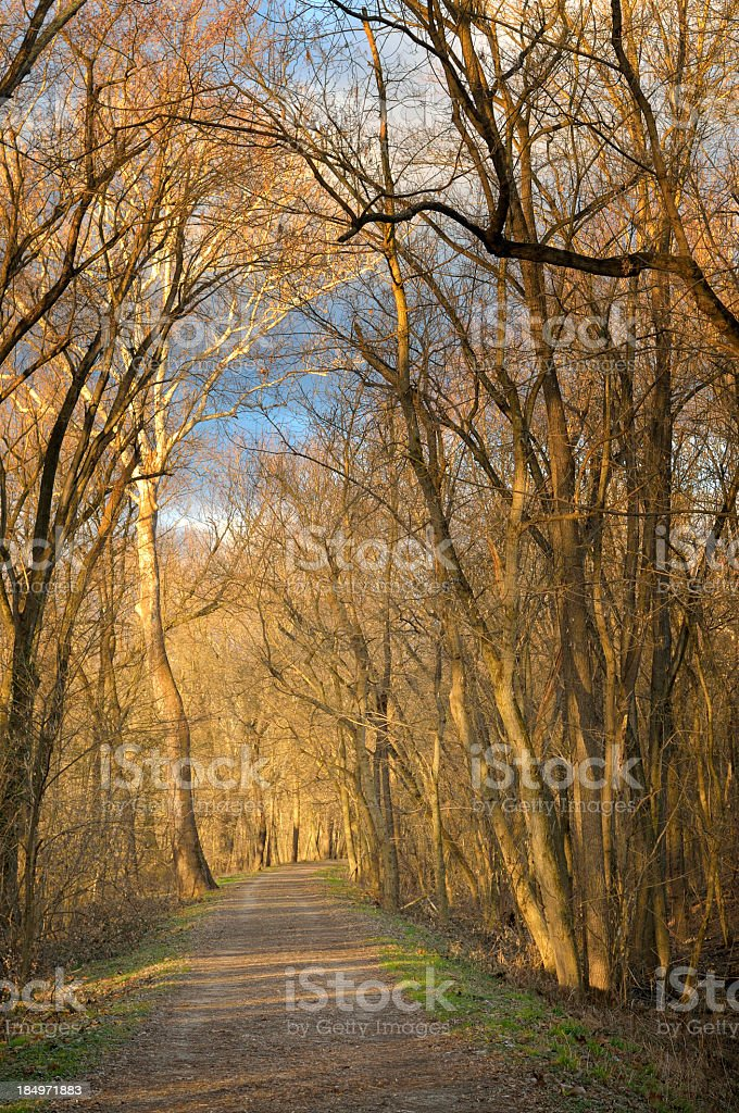 Williamsport C&O Canal Path At Dawn stock photo