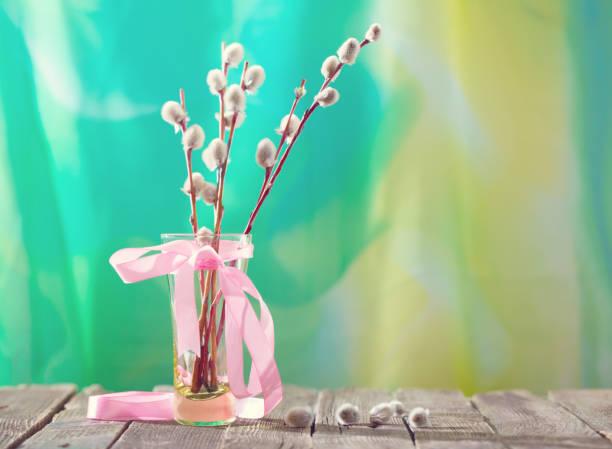 weidenruten mit einem rosa band in einer transparenten vase - palmbuschen stock-fotos und bilder