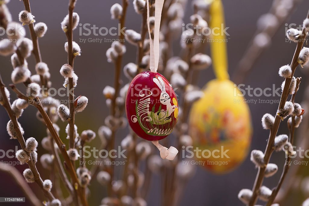 Willow catkins with eggs royalty-free stock photo