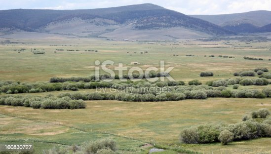 The Big Hole Divide mountains in the background and willow lined stream coursing through the meadow provide a tranquil scene. Picture taken west of Dillon, Montana in July.