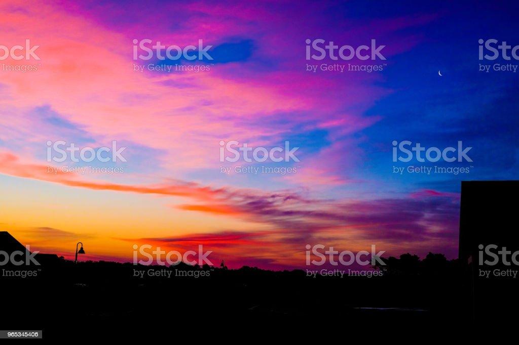 Lever du soleil de Wilmington - Photo de Arbre en fleurs libre de droits