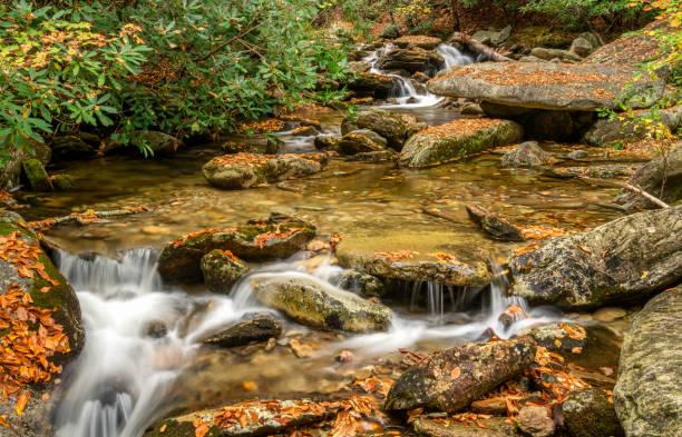 wilson creek stream im herbst aus den blue ridge parkway - hostals trail - own wilson stock-fotos und bilder