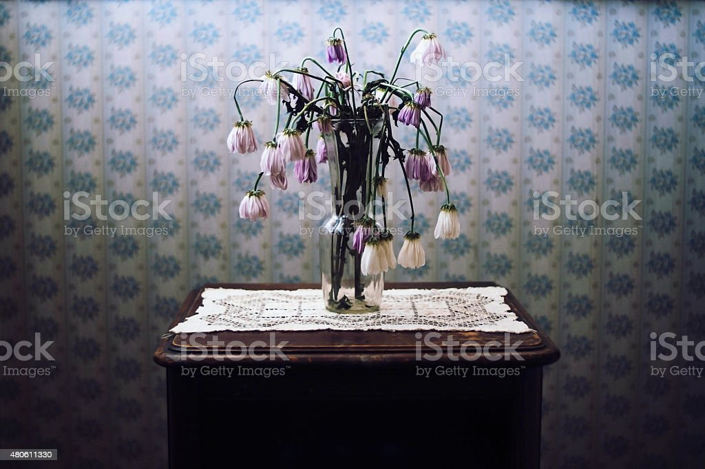 Wilted Flowers in Vase with Old Wallpaper stock photo