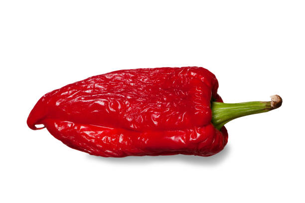 Wilted sweet pepper isolated on white. Clipping path. stock photo