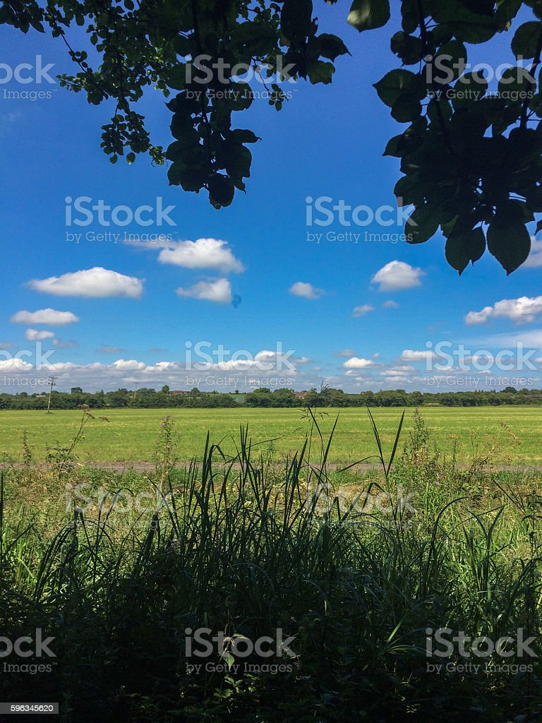 Wilts & Berks Canal royalty-free stock photo