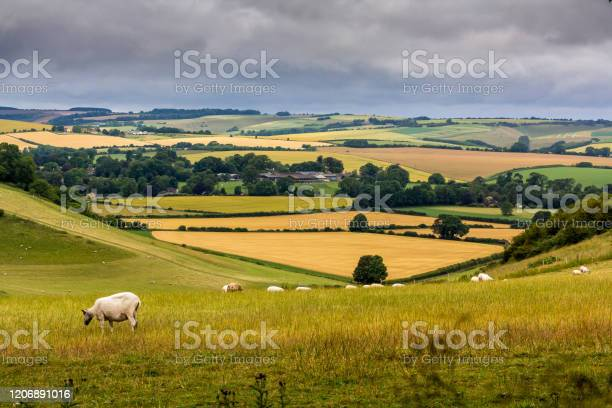 Photo of Wiltshire countryside