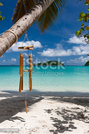 wind chime and palm tree on  maho bay beach, st. John, virgin islands